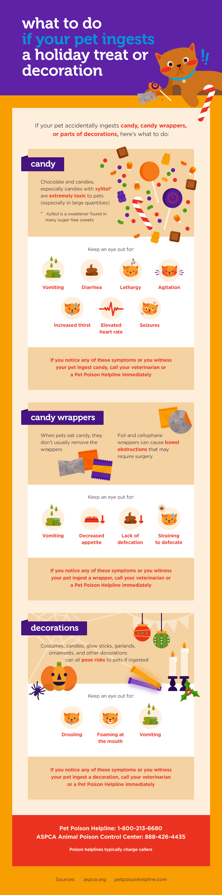 Halloween Pet Safety Tips And Costume Advice