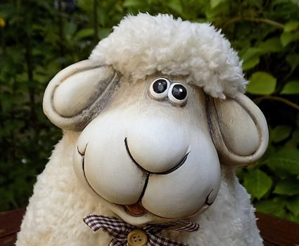 Why National Hug a Sheep Day? Because sheep deserve to be hugged for all the warm sweaters, socks your grandma knit for you, and cheese too!