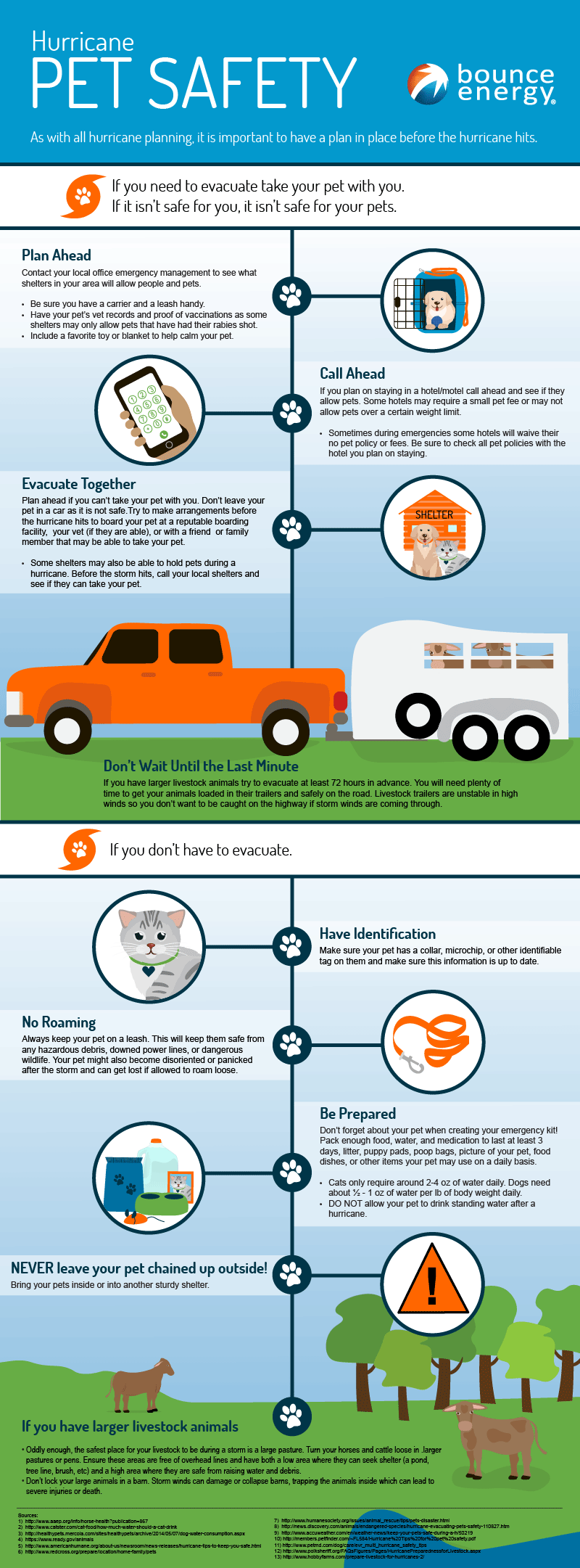 Hurricane Safety for your Pets