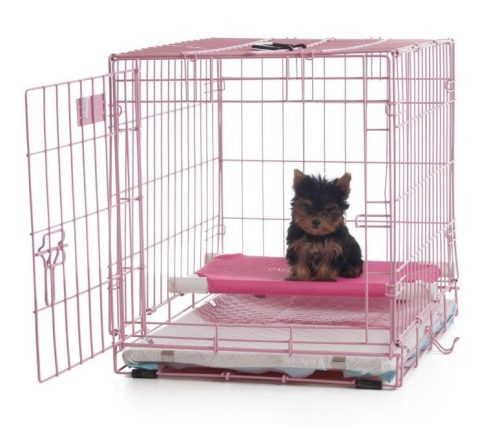 If you are going to adopt a puppy, already have a puppy, or you live in an apartment with no yard, you need the Pup Pee Poo Palace. - https://www.animalbliss.com