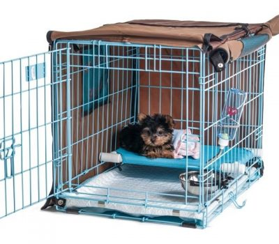 Pup Pee Poo Palace : Revolutionary Puppy Potty Training