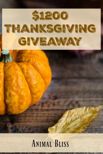 $1200 Thanksgiving Giveaway