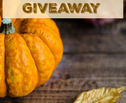 Thanksgiving Cash Giveaway, $400 to 3 winners, ends 11/25