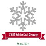 Holiday Cash GIVEAWAY, 4 lucky winners, $400 each, ends 12/22