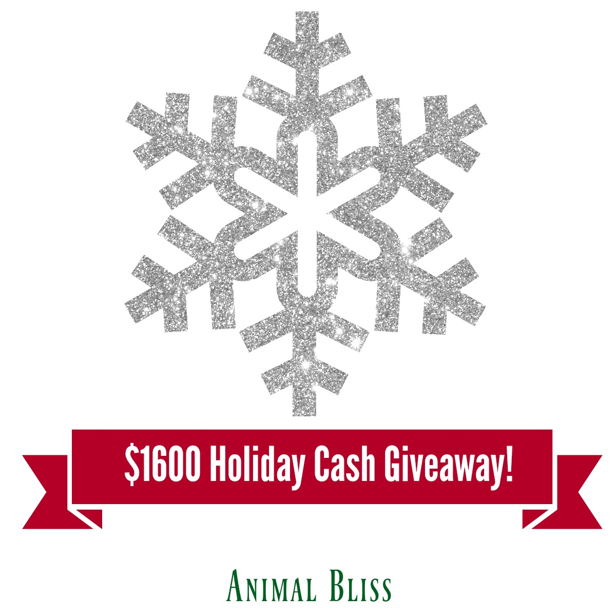 $1600 Holiday Cash Giveaway