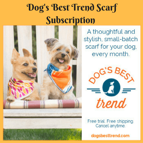 Dog's Best Trend Scarf Subscription Review