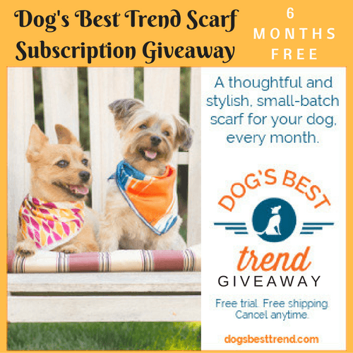 dogs-best-trend-scarf-1