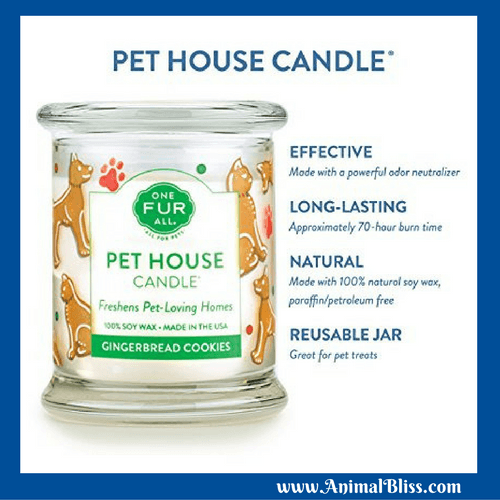 Pet House Candles Review (They're amazing.)