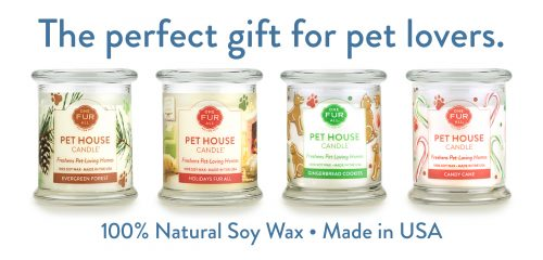 Pet House Candles by All Fur One -- They're amazing!