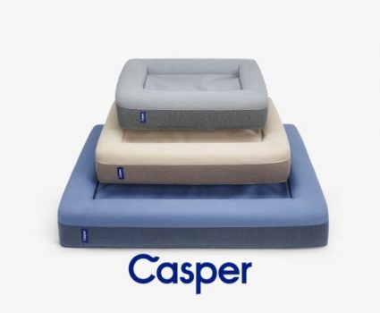 Casper Dog Bed : A Dog's Dream Come True?