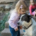 Child Safety: 4 Tips For Teaching Safety Around Dogs