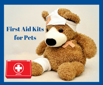 7 Essentials to Keep in Your First Aid Kit for Your Pets