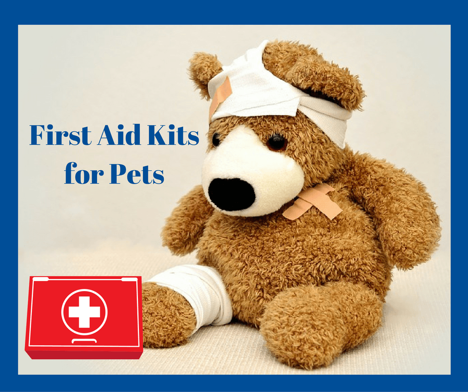 First aid for pets – new app! – First aid for free |First Aid For Pets Files