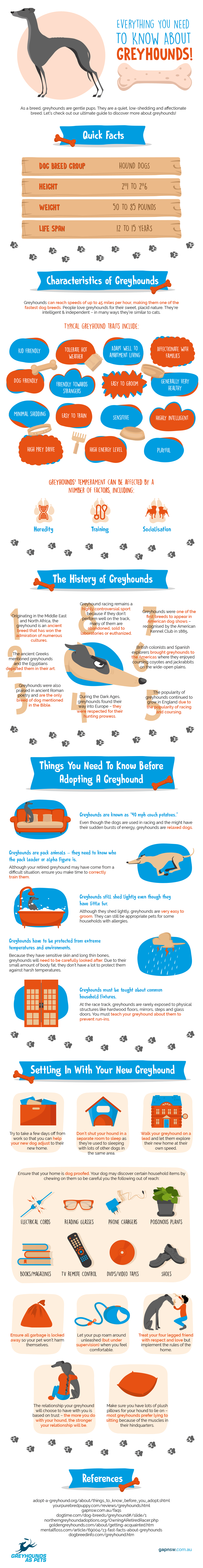 Greyhounds can reach speeds of up to 45 miles per hour (Visual Asset)