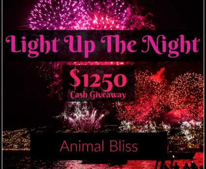 Light up the Night with a Cash Prize Giveaway, ends 1/25