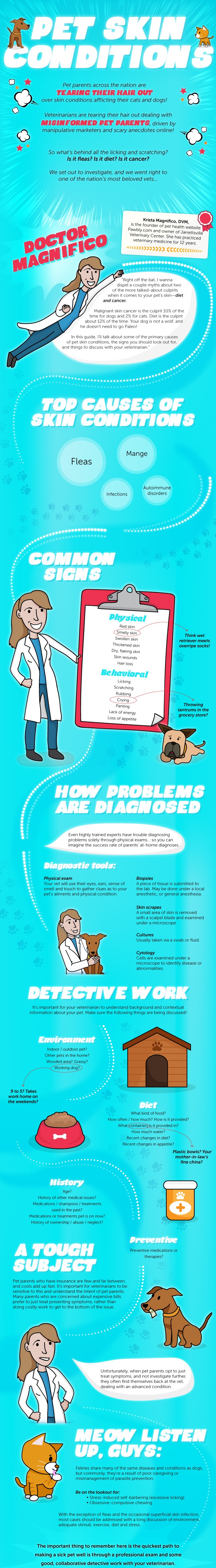 Common Skin Conditions in Pets Infographic