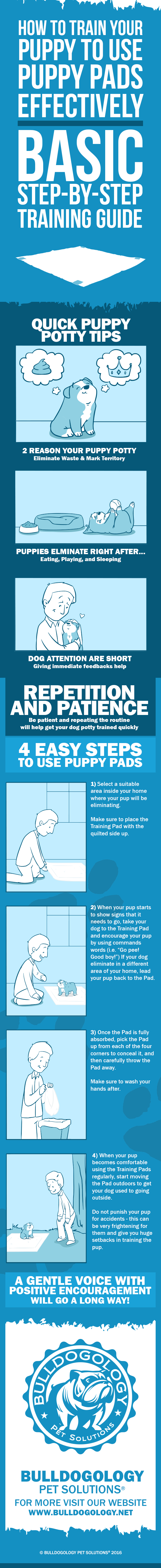 Training Your Puppy to Use Puppy Pads