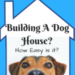 Building A Dog House – How Easy is it?
