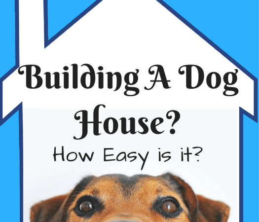 Are you planning on building a dog house? Are you a do-it-yourself type? Perhaps you'll need a dog house kit. Consider these options. Read on