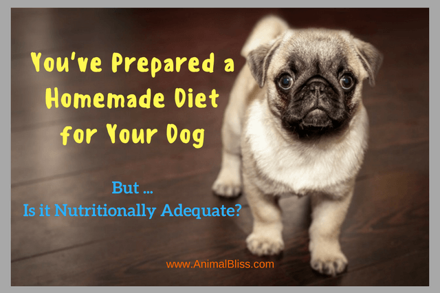 You're preparing a homemade diet for your dog? But is it enough?
