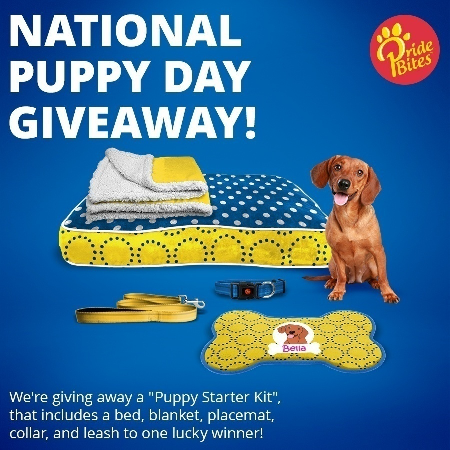 National Puppy Day Giveaway