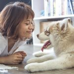 5 Problems to Avoid While Owning a Dog – Some Wisdom