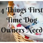 4 Things First Time Dog Owners Need for a Happy Dog