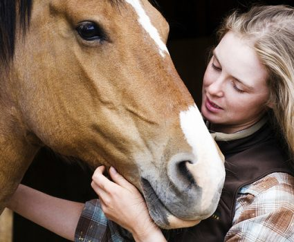Horse Grooming Kit Checklist and Uses [Infographic]