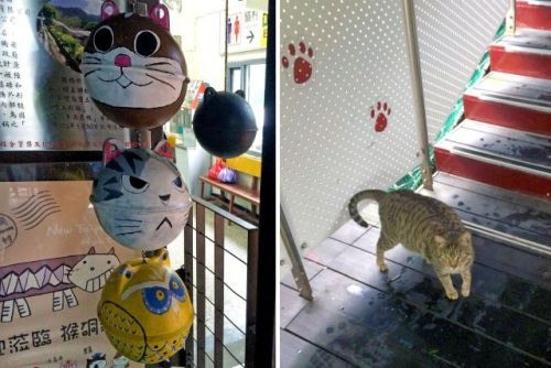 Houtong Cat Village is a cat lover's delight.