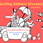 Sizzling Summer Giveaway, ends on 6/30/17