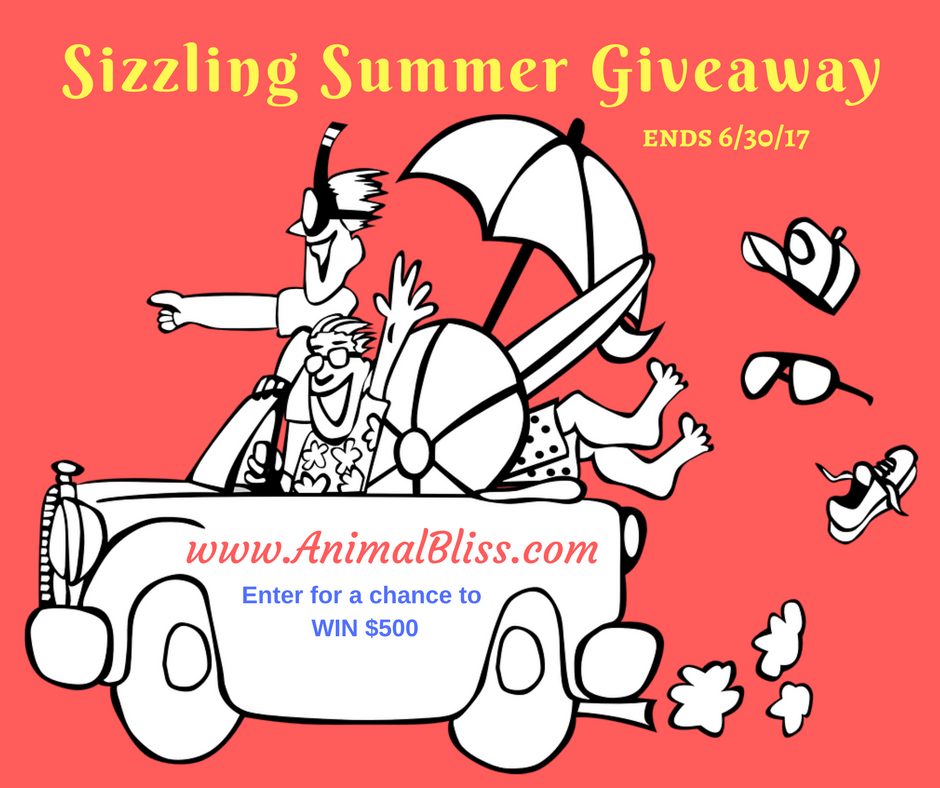 Three lucky readers will WIN $500 each in our Sizzling Summer Giveaway. Enter now for a chance to WIN.