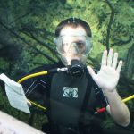Toby Sanders has more than 15 years of experience in the aquarium sector and is passionate about creating Aquarist Guide.