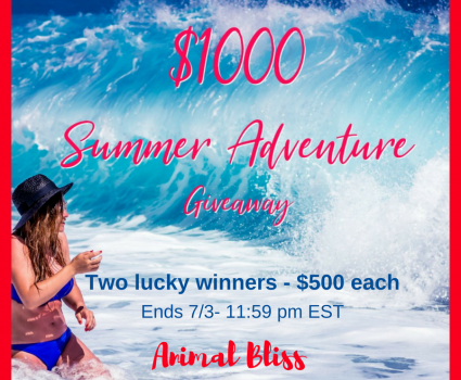 Make Your Summer Even Better, Enter to Win $500