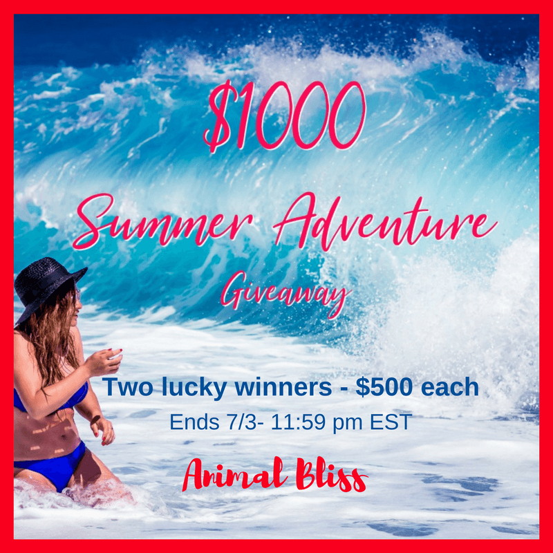Make your summer even better than you'd planned. Enter this giveaway for a chance to be one of two winners of an extra $500 in Paypal cash.