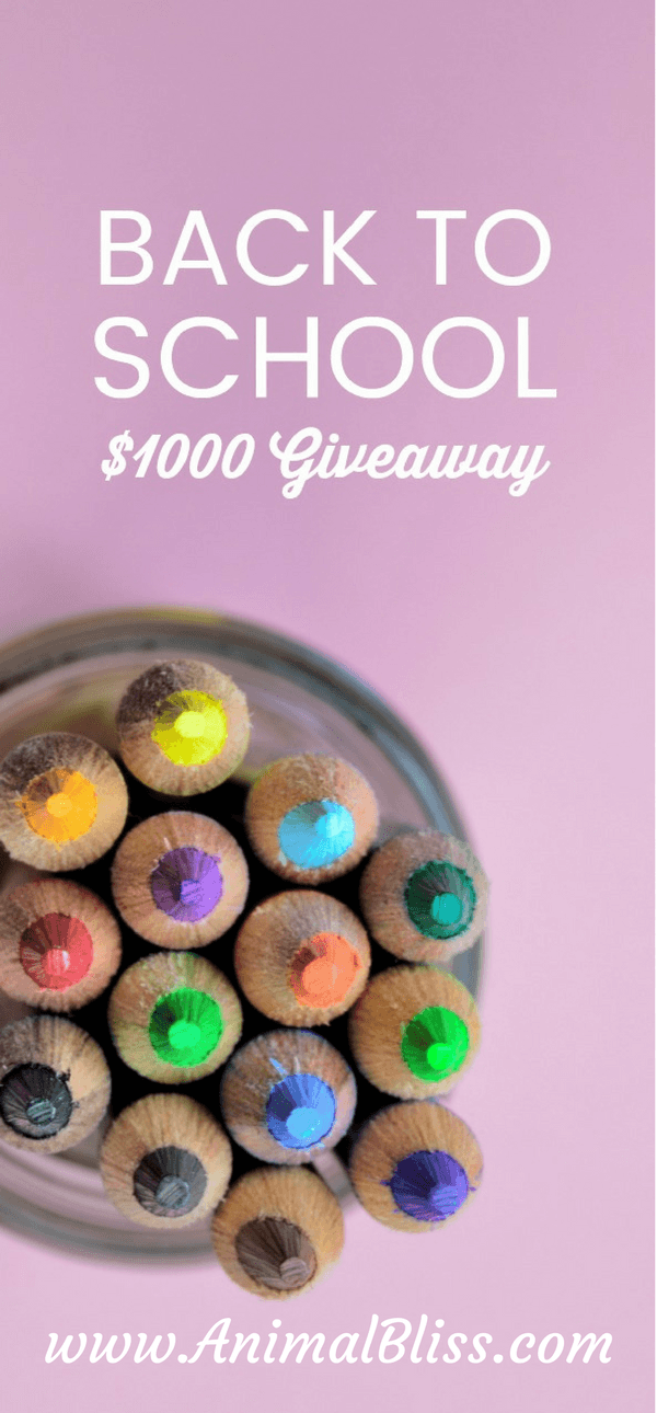 Back to School Giveaway, 2 Winners $500 each, ends 9/30/17