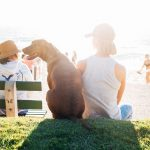 5 Impressive Services Dogs Can Do That You May Not Know