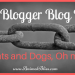 Pet Blogger Blog Hop, Cats and Dogs, Oh my!