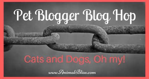 If you blog about your animals, then come join our pet blogger blog hop fun. It's an easy way to link to new pet websites and get yours seen too.