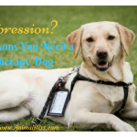 Do You Have Depression? 3 Reasons You Need a Therapy Dog
