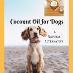 Coconut Oil for Dogs- Providing a Natural Healthy Alternative