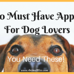 10 Must Have Apps For Dog Lovers: You Need These!