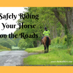 Safely Riding Your Horse on the Roads – Rules to Apply
