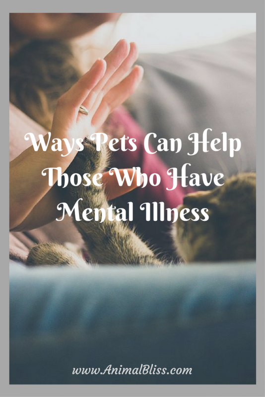 Pets Can Help Those Who Have Mental Illness