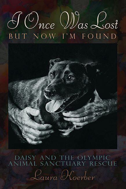 """I Was Lost, but Now I'm Found: Daisy and the Olympic Animal Sanctuary Rescue,"" by Laura Koerber, is the true story of an epic rescue."