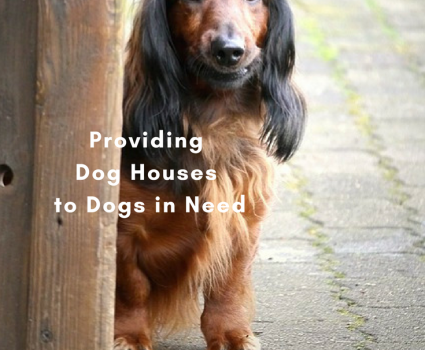 Habitat for Hounds is all about getting warm, insulated dog houses to dogs in need. Or, pay a pittance and get detailed plans to build your own.
