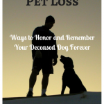 Ways to Honor and Remember Your Deceased Dog Forever