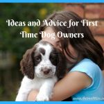 Ideas and Advice for First Time Dog Owners [Infographic]