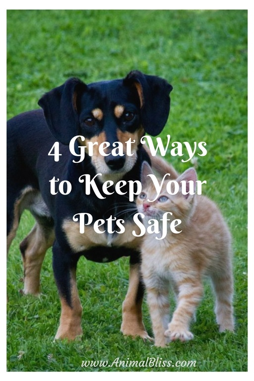 4 Great Ways to Keep Your Pets Safe