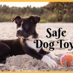 Safe Dog Toys to Curb Destructive Chewing and Other Behavior Problems