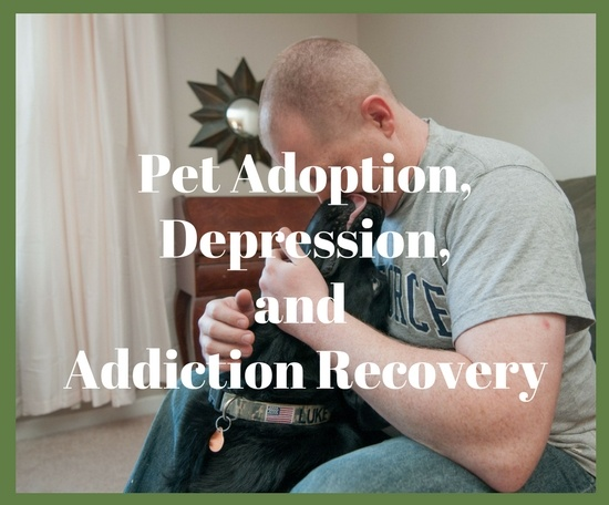Pet adoption and depression or addiction recovery often go hand in hand. Not only are you giving the rescue animal a new lease on life and a forever home, but the companionship this pet can provide you with offers a new sense of purpose and uplifting feeling that no other form of therapy can afford.